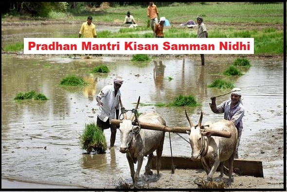 Pradhan Mantri Kisan Samman Nidhi Scheme In Hindi, जानिए पूरी जानकारी हिंदी में