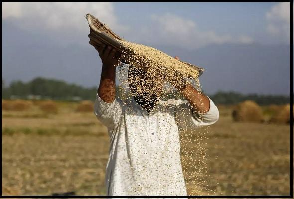 क्या है प्रधानमंत्री किसान सम्मान निधि योजना