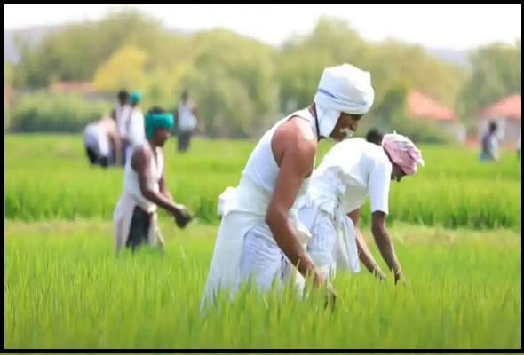 Pradhan Mantri Kisan Samman Nidhi Scheme के लिए जरुरी दस्तावेज